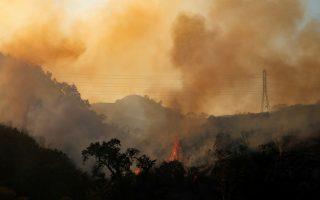 Φωτ. REUTERS/Mike Blake/File Photo